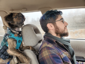 Ready and willing for a road trip! (Don't worry, he's wearing a dog seat belt 💜): Ready and willing for a road trip! (Don't worry, he's wearing a dog seat belt 💜)