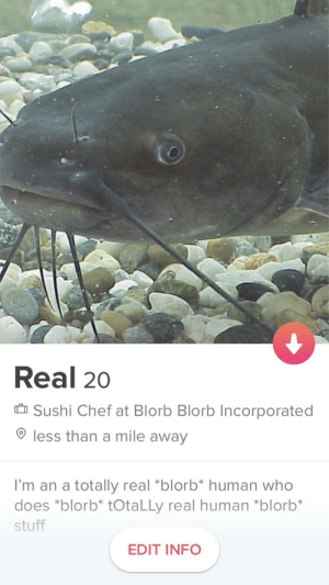 Tinder, Chef, and Stuff: Real 20  Sushi Chef at Blorb Blorb Incorporated  less than a mile away  I'm an a totally real *blorb* human who  does *blorb* tOtaLLy real human *blorb*  stuff  EDIT INFO I made my first tinder account