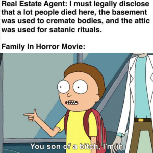 What could possibly go wrong?: Real Estate Agent: I must legally disclose  that a lot people died here, the basement  was used to cremate bodies, and the attic  was used for satanic rituals.  Family In Horror Movie:  You son of a bitch, I'min What could possibly go wrong?