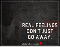 Memes, 🤖, and Love Quotes: REAL FEELINGS  DON'T JUST  GO AWAY  akhar Sahay  Like Love Quotes.com Real feelings don't just go away.