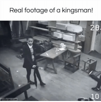Dank, 🤖, and Real: Real footage of a kingsman!  28  gifbin.com wait, what? #diplymix