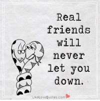 Real Friends, Dekh Bhai, and International: Real  friends  will  never  let you  clown.  Like Love Quotes.com True that 👌🏻 Tag your best buddies 😝 Credits ➡️ @likelovequotes