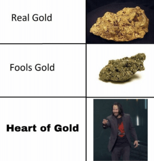 Memes, Heart, and 🤖: Real Gold  Fools Gold  Heart of Gold https://t.co/elLE5VVfFp
