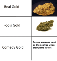 Comedy, Irl, and Me IRL: Real Gold  Fools Gold  Saying someone peed  on themselves when  their pants is wet  Comedy Gold me_irl