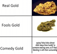 Dank Memes, Comedy, and Lmfao: Real Gold  Fools Gold  saying 'whoa haha almost  didnt seeya there buddy' to  someone wearing camo, as if they  blending in with their surroundirng  Comedy Gold Lmfao
