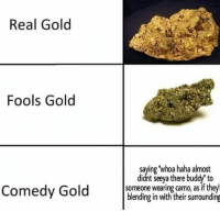 Gottem: Real Gold  Fools Gold  saying whoa haha almost  didnt seeya there buddy' to  someone wearing camo, as if they  blending in with their surrounding  ome Gottem