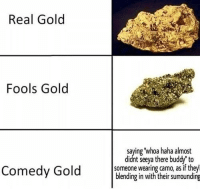 Comedy, Haha, and Gold: Real Gold  Fools Gold  saying 'whoa haha almost  didnt seeya there buddy'to  Comedy Gold ne wearing aimg as fithle  blending in with their surrounding