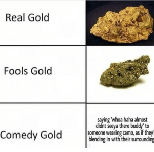 Comedy, Haha, and Gold: Real Gold  Fools Gold  saying 'whoa haha almost  didnt seeya there buddy' to  someone wearing camo, as if they  blending in with their surrounding  Comedy Gold Whoa haha
