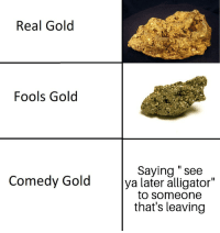 """see you later alligator: Real Golod  Fools Gold  Saying """" see  ya later alligator""""  to someone  that's leaving  Comedy Gold"""