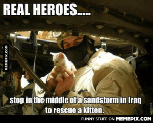 Cat marines > rest of the world.omg-humor.tumblr.com: REAL HEROES.  stop in the middle of a sandstorm in Iraq  to rescue a kitten.  FUNNY STUFF ON MEMEPIX.COM  MEMEPIX.COM  ROFLBOT Cat marines > rest of the world.omg-humor.tumblr.com