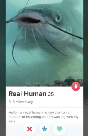 Hello, Human, and Air: Real Human 25  5 miles away  Hello I am real human I enjoy the human  hobbies of breathing air and walking with my  legs If I'm being catfished right now I'm going to be so freaking pissed.