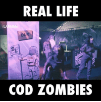 Would you dare play this Call of Duty Zombies laser tag?: REAL LIFE  OUR  Si  COD ZOMBIES Would you dare play this Call of Duty Zombies laser tag?