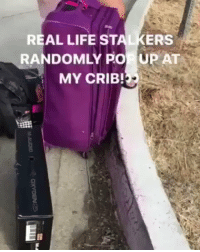Chris Brown, Life, and Memes: REAL LIFE ST  ERS  RANDOMLY Po UPAT  MY CRIB! Chris Brown got stalkers showing up at his house! 👀 https://t.co/zay9RmMqTS