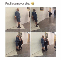 Cute, Love, and Girl Memes: Real love never dies That's so cute