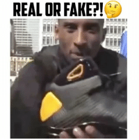 Martin, Memes, and Aston Martin: REAL OR FAKE?! NeverForget When Kobe Jumped Over a Speeding Aston Martin😳 - Was this REAL or FAKE?!? Comment Below👇🏻 - Follow (me) @overtimeplayz for more!