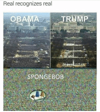 Memes, 🤖, and Oba: Real recognizes real  OBA  TRUMP  SPONGEBOB SpongeBob wins this one and that's an (alternate) fact!