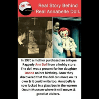 Be Like, Birthday, and Meme: Real Story Behind  Real Annabelle Doll.  In 1970 a mother purchased an antique  Raggedy Ann Doll from a hobby store  The doll was a present for her daughter  Donna on her birthday. Soon they  discovered that the doll can move on its  own & it could write too. Annabelle is  now locked in a glass box in the warren  Occult Museum where it still moves &  growl at visiters. Twitter: BLB247 Snapchat : BELIKEBRO.COM belikebro sarcasm meme Follow @be.like.bro