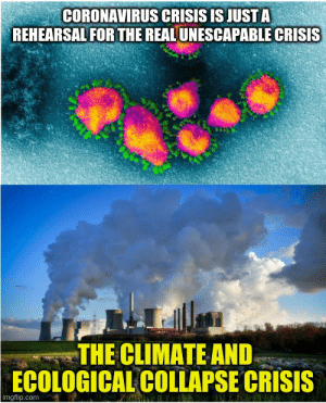 Real Unescapable Crisis: The Environmental Collapse Crisis: Real Unescapable Crisis: The Environmental Collapse Crisis