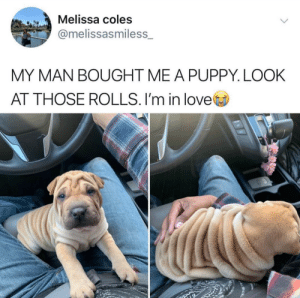 Real Wrinkly boi: Real Wrinkly boi