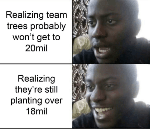 That's still a lot of trees: Realizing team  trees probably  won't get to  20mil  Realizing  they're still  planting over  18mil That's still a lot of trees
