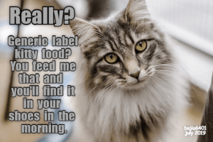label: Really?  Generic label  kitty food?  You feed me  that and  you'll find it  in your  shoes in the  morning  bajio6401  july 2019