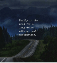 Mood, Drive, and Real: Really in the  mood for a  long drive  with no real  destination.