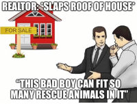 Fit, For, and This: REALTOR: SLAPS ROOFOFHOUSE  FOR SALE |  THIS B  MANY RESCUEANIMALS INIT  BADBOYCAN FIT SO