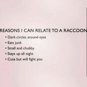 Cute, Raccoon, and Circles: REASONS I CAN RELATETO A RACCOON  . Dark circles around eyes  .Eats junk  Small and chubby  . Stays up all night  Cute but will fight you If you are a student Follow @studentlifeproblems​