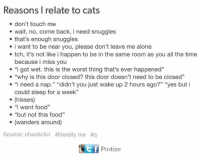 "Being Alone, Cats, and Food: Reasons I relate to cats  don't touch me  wait, no, come back, i need snuggles  that's enough snuggles  i want to be near you, please don't leave me alone  tch, it's not like i happen to be in the same room as you all the time  because i miss you  ""i got wet. this is the worst thing that's ever happened""  ""why is this door closed? this door doesn't need to be closed""  i need a nap  ""didn't you just wake up 2 hours ago?"" ""yes but i  could sleep for a week""  (hisses)  i want food""  ""but not this food""  (wanders around)  Source: chaoticlivi #literally me fiq  Ttf Postize"
