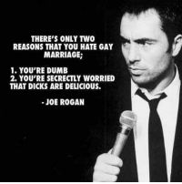 Joe Rogan: REASONS THAT YOU HATE GAY  MARRIAGE  1. YOU'RE DUMB  2. YOU'RE SECRECTLY WORRIED  THAT DICKS ARE DELICIOUS.  JOE ROGAN