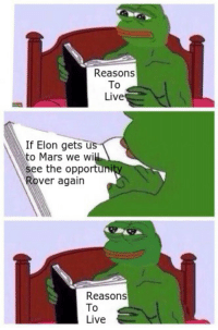 Live, Mars, and Elon: Reasons  To  Live  If Elon gets us  to Mars we wi  see the opportuni  Rover again  Reasons  To  Live In Elon we believe