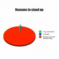 Memes, The Real Slim Shady, and The Real: Reasons to stand up  To go somewhere  To Stretch  Because you're the  real slim shady Follow @hoest for some of the funniest memes 😂