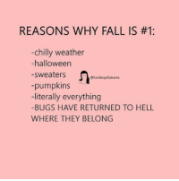 Fall, Halloween, and Weather: REASONS WHY FALL IS #1:  chilly weather  -halloween  -sweaters  -pumpkins  -literally everything  -BUGS HAVE RETURNED TO HELL  WHERE THEY BELONG  @fuckboysfailures