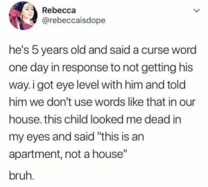 "Bruh.. 😂🤦‍♂️ https://t.co/amUPzVYFYW: Rebecca  @rebeccaisdope  he's 5 years old and said a curse wora  one day in response to not getting his  way. i got eye level with him and told  him we don't use words like that in our  house. this child looked me dead in  my eyes and said ""this is an  apartment, not a house""  bruh Bruh.. 😂🤦‍♂️ https://t.co/amUPzVYFYW"