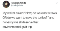 "White, Turtles, and The Turtles: Rebekah White  @beksjwhite  My waiter asked ""Now, do we want straws  OR do we want to save the turtles?"" and  honestly we all deserve that  environmental guilt trip"