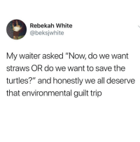 "Memes, White, and 🤖: Rebekah White  @beksjwhite  My waiter asked ""Now, do we want  straws OR do we want to save the  turtles?"" and honestly we all deserve  that environmental guilt trip"