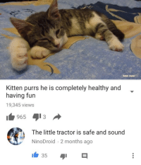 Fun, Sound, and Safe: Rebin Seplut  Kitten purrs he is completely healthy and  having fun  19,345 views  1965 13   The little tractor is safe and sound  NinoDroid 2 months ago  à  35