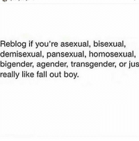 Try finding it out bitchz: Reblog if you're asexual, bisexual,  demisexual, pansexual, homosexual  bigender, agender, transgender, or jus  really like fall out boy. Try finding it out bitchz