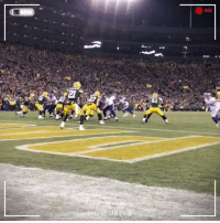 Memes, 🤖, and Cam: REC  IDEL NE CAM Sideline view of that @stefondiggs TD! #MINvsGB #Skol https://t.co/jNrDDI6jxA