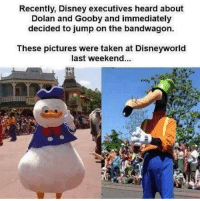 Dizne pls -Blondie: Recently, Disney executives heard about  Dolan and Gooby and immediately  decided to jump on the bandwagon.  These pictures were taken at Disneyworld  last weekend. Dizne pls -Blondie