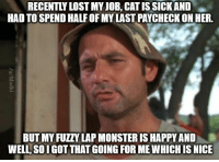 Advice, Do It Again, and Monster: RECENTLY LOST MY JOB. CAT IS SICK AND  HAD TO SPEND HALF OF MY LAST PAYCHECK ON HER.  BUT MY FUZZY LAP MONSTER IS HAPPY AND  WELL, SOIGOT THAT GOING FOR MEWHICH IS NICE advice-animal:  And I would do it again.