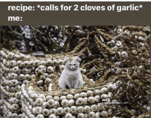 afp: recipe: *calls for 2 cloves of garlic*  me:  AFP  PONALDO SCHEMIOT/AFP