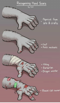 Memes, Chef, and House: Recognising Hand Scars  by Coal  Papercut from  arts & crafts  . Chef  . Auto mechanic  . Viking  . Barbarian  Dragon wrestler  House cat owner