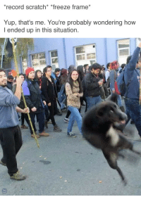 tastefullyoffensive:(via bravereddit): record scratch* *freeze frame  Yup, that's me. You're probably wondering how  I ended up in this situation. tastefullyoffensive:(via bravereddit)