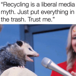 "Trash, Media, and Liberal: ""Recycling is a liberal media  myth. Just put everything in  the trash. Trust me."" Trashpandas would agree with this statement"