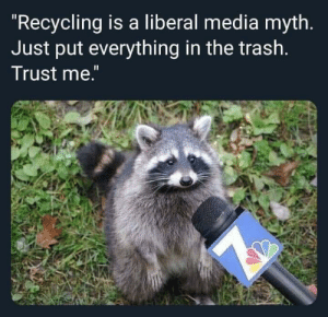 "Trash panda.: ""Recycling is a liberal media myth.  Just put everything in the trash.  Trust me."" Trash panda."