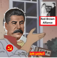 Image result for Red-Brown Alliance