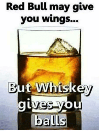 Memes, Red Bull, and Bulls: Red Bull may give  you wings...  But Whiskey  Ou  balls -SB
