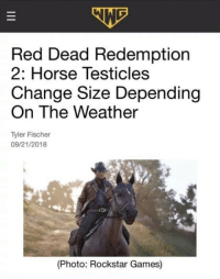 Anaconda, Games, and Horse: Red Dead Redemption  2: Horse Testicles  Change Size Depending  On The Weather  Tyler Fischer  09/21/2018  (Photo: Rockstar Games) Realism Level: 100