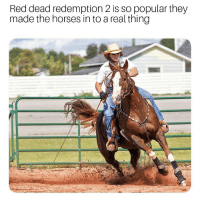 It was only a matter of time @gamersdoingstuff: Red dead redemption 2 is so popular they  made the horses in to a real thing It was only a matter of time @gamersdoingstuff
